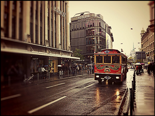 0429 SF (Yellow Umbrella)