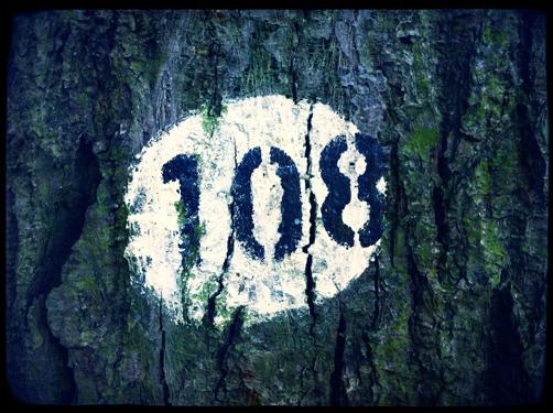 0689 Count Tree