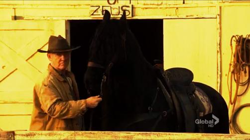 Z Horse (ES)
